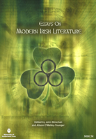 Modern Irish Literature book cover